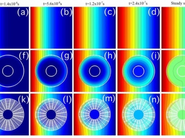 <p>Concentration profiles for cloaked compound A at different times and steady-state. (a–e) background, (f–j) anisotropic homogeneous cloak, (k–o) multilayer cloak. (Credit: Martin Maldovan and Juan Manuel Restrepo-Flórez, Georgia Tech)</p>