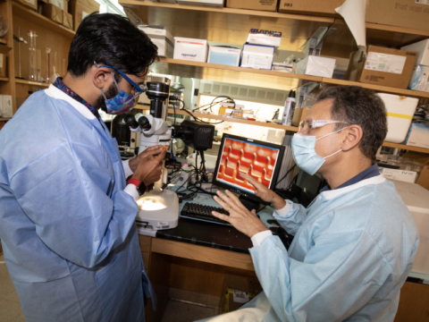 <p>Georgia Tech researchers<strong> </strong>Saad Bhamla (left) and Mark Prausnitz (right) study the ePatch in the laboratory. (Photo credit: Candler Hobbs, Georgia Tech)</p>